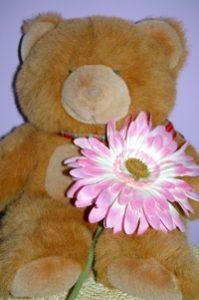 Berrie Beer wil vrienden zijn met een bloem