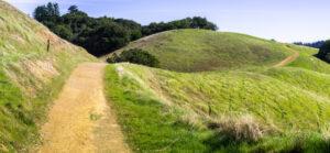 Filosoferen is als wandelen door een heuvellandschap