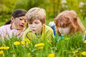 Week van de Kinderfilosofie thema natuur