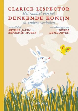Cover van Het raadsel van het denkende konijn